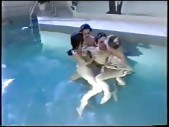 German Group Sex near the Pool